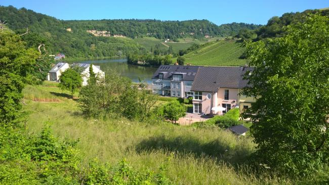 Luxury villa with Moselle view